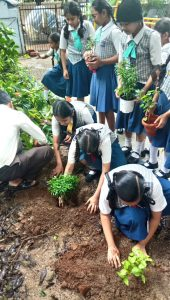 Secondary-Section---Plantation-1
