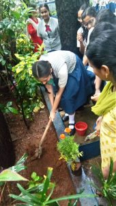 Secondary-Section---Plantation-2